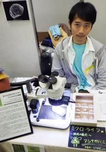 大阪市立自然史博物館 外来研究員 熊澤 辰徳さんによるアシナガバエの展示・解説ブース