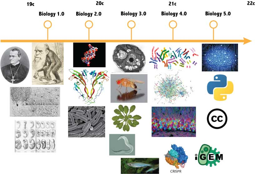 fig2-biohistory