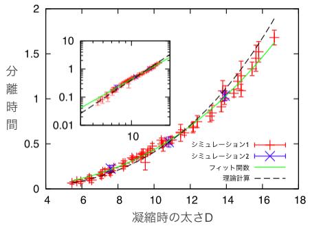 棒状高分子の太さと分離時間の関係。分子動力学シミュレーション(赤と青)では、棒状高分子の太さDが大きいほど分離時間が長くなることが示された。つまり、分離時間は太さに大きく依存する。理論計算(破線)では、分離時間は太さの3乗に比例して大きくなることが予想された