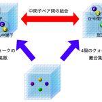 クォークの織りなす新奇な世界 – 新粒子候補テトラクォークZc(3900)の正体に迫る