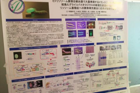 蚕業革命の実現を目指して – 徳島大・伊藤教授のサイエンスカフェ開催レポート