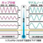 体内時計は冷やすとブランコになる – 物理学が明らかにする体内時計のとまりかた