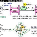 分子の容器にキャップをつけてイオンの出入りをコントロール – ホスト・ゲスト化学の新手法