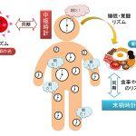 食品成分で時差ボケは解消できるか – 体内時計を動かす食べ物の話