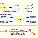 理論計算化学が拓く新反応開発 – 遷移金属を用いないアルキニルホウ素化反応