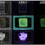 長時間光り続ける有機化合物を作る! – 有機蓄光システムの特色と今後の課題