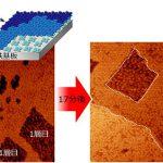 薄さは分子1個分! 室温でも「超安定」な極薄有機分子膜 – 磁気メモリの高密度化・省エネ化を促進
