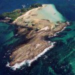 京都大学所有の無人島「畠島」での半世紀にわたるウニ類の継続調査からわかったこと
