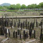 失われた長江新石器文明の謎 – 約4200年前の気候変動を海洋堆積物から復元する