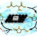 新たな触媒技術でアミノ酸を化成品原料へ変換する!