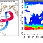 北太平洋の豊かさはどのように生み出されるのか?- 海洋コンベアベルト終着点の栄養物質循環を解明